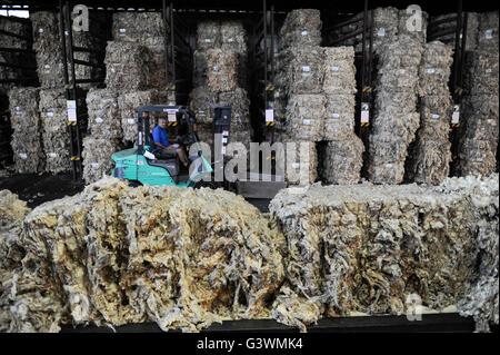 URUGUAY city Trinidad, company Lanas Trinidad  S.A. processing of Merino sheep wool, wool combing and spinning unit, - Stock Photo