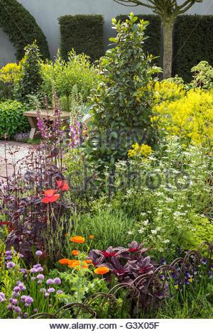 The St John\'s Hospice – A Modern Apothecary garden. RHS Chelsea ...