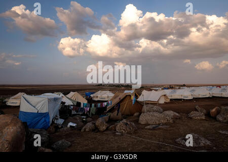 View of Newroz refugee camp situated in Al Jazira Canton, North Eastern Syria. Newroz was initially established - Stock Photo