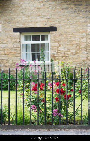 Roses and railings in front of a cottage. Bampton, Oxfordshire, England - Stock Photo