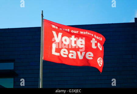 Hastings Stade 'Vote to Leave' flag 'We want our waters back' fishermen of East Sussex England Britain GB UK - Stock Photo
