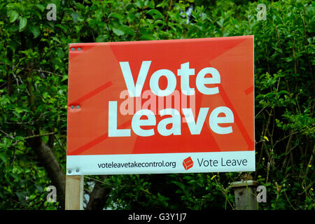 Weston-super-Mare, UK. 16th June, 2016. A sign in favour of a vote to leave the European Union in the garden of - Stock Photo