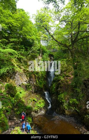 Aira Force, Ullswater, Lake District National Park, Cumbria, England, UK, GB,  Europe - Stock Photo