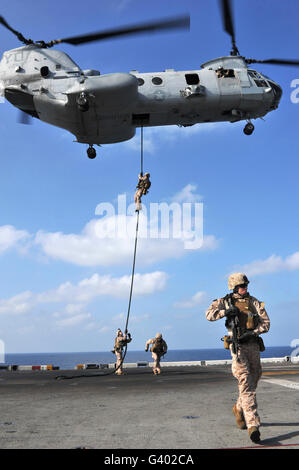 Marines fast rope from a CH-46E Sea Knight helicopter. - Stock Photo