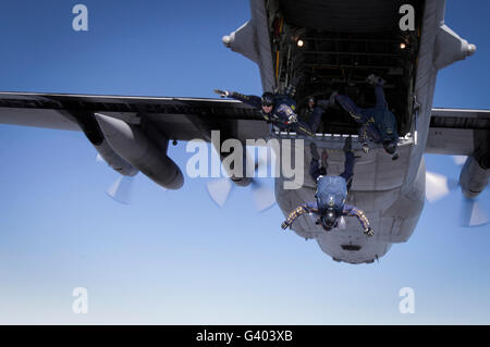U.S. Navy Parachute Team, the Leap Frogs, jump from a C-130 Hercules. - Stock Photo