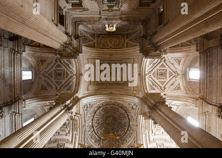 Interior view, ceiling, Jaén Cathedral, Jaén, Andalusia, Spain, Europe - Stock Photo