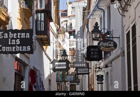 Alleyway, Calleja de las Flores, Córdoba, Andalusia, Spain, Europe Stock Photo