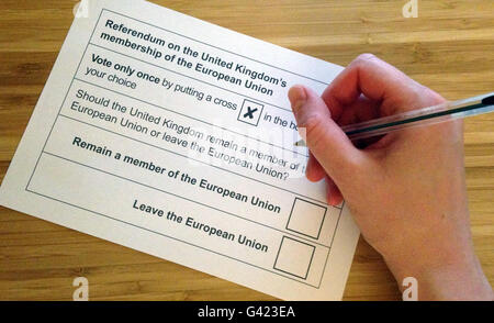 London, UK. 16th June, 2016. ILLUSTRATION - A ballot paper for the EU referendum in Great Britain, photographed - Stock Photo