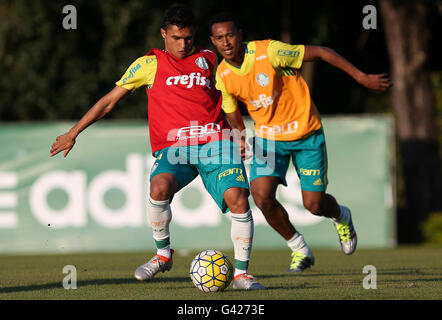 Sao Paulo, Brazil. 06th July, 2016. TRAINING OF TREES - The Erik, the SE Palmeiras, during training, the Football - Stock Photo