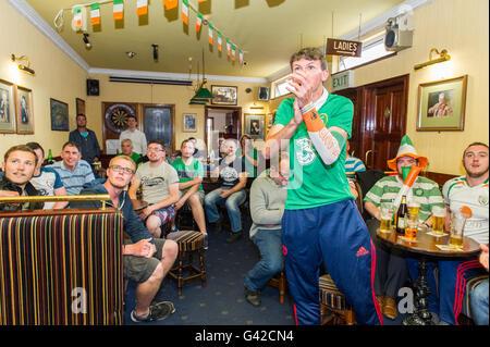Skibbereen, West Cork, Ireland. 18th June, 2016. Ireland fans in Calahanes Bar, Skibbereen, react to an Irish near - Stock Photo