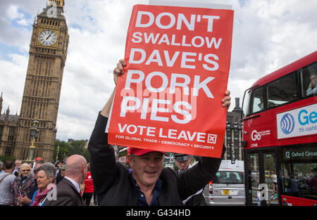 Leave supporters watch the Vote out' flotilla from Westminster Bridge - 'Don't swallow Dave's Pork pies' banner - Stock Photo