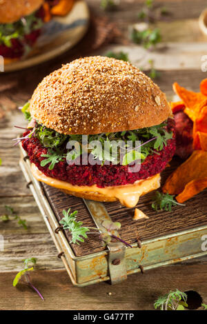Healthy Baked Red Vegan Beet Burger with Microgreens - Stock Photo