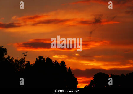 Vivid colours as the sunsets over Wanstead, East London - Stock Photo