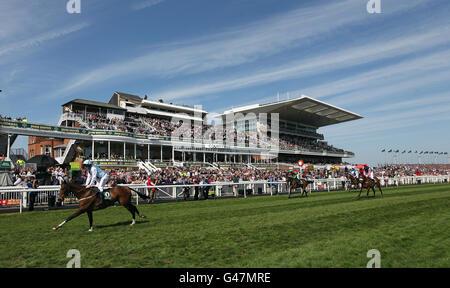 Horse Racing - The 2011 John Smith's Grand National - Day Three - Aintree Racecourse - Stock Photo