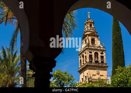 Alminar Tower minaret, Patio de los Naranjos, Mezquita Cathedral. Cordoba City Andalusia, Spain, Europe - Stock Photo