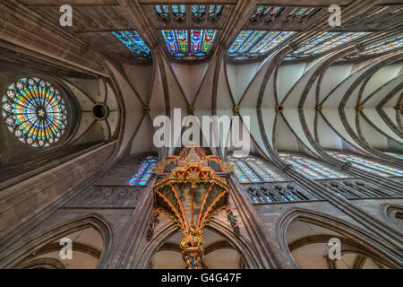 Strasbourg Cathedral church organ and ceiling, Strasbourg,  Alsace, France - Stock Photo