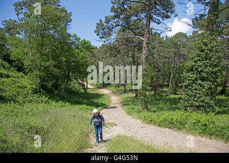 Woman walking along sandy path through pine forest Great Dune of Pyla Southern France - Stock Photo