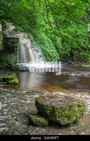 West Burton Waterfall, also known as Cauldron Falls, in the Yorkshire Dales National Park North of England, UK - Stock Photo