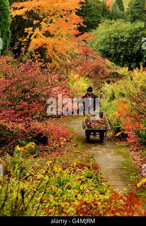 Autumn weather Nov 2 - Stock Photo