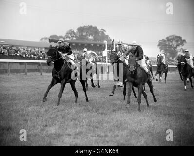 Horse Racing - Alexandra Palace - London - Stock Photo