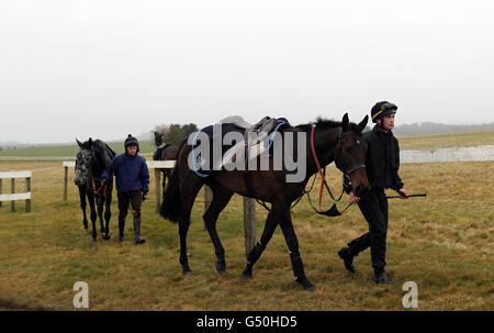 Horse Racing - Nicky Henderson Stable Visit - Seven Barrows Stables - Stock Photo