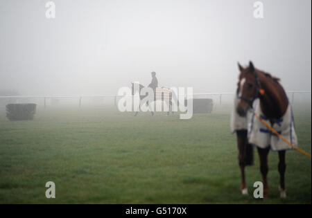 Horse Racing - 2012 Cheltenham Festival - Preview Day - Cheltenham Racecourse - Stock Photo
