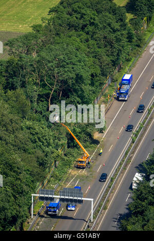 Aerial view, traffic congestion on the A43 towards Herne in Pattern Recklinghausen, storm, storm damage, bent trees, - Stock Photo