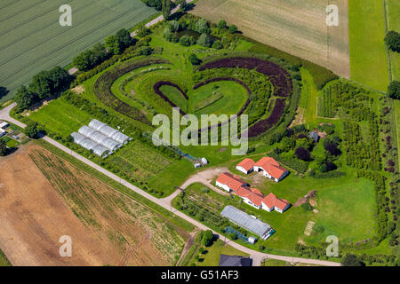 Aerial view, Heart, horticultural company in Waltrop, tree and bush school in the form of a heart, heart shape, - Stock Photo
