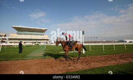 Horse Racing - The 2012 John Smith's Grand National - Day Two - Aintree Racecourse - Stock Photo