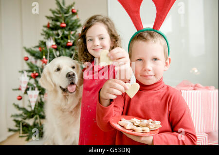 A girl and a boy wearing moose antlers eating Christmas cookies in front of a Christmas tree, a Golden Retriever - Stock Photo
