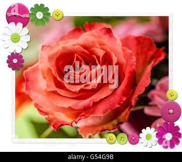 Red rose flowering in a bouquet, set against unfocused background. A textured and digitally altered photo with patterned - Stock Photo