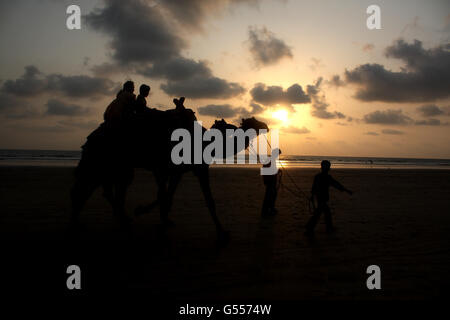 A silhouette of people having a camel ride on a beach, at sunset. - Stock Photo