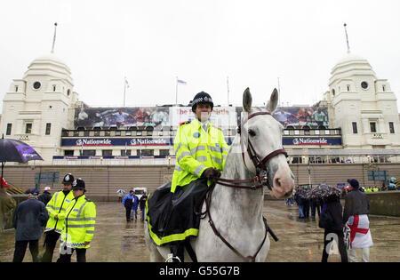 WEMBLEY Police Horse - Stock Photo