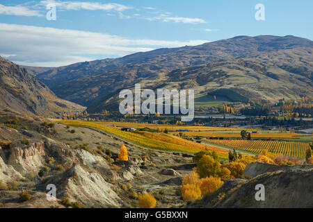 Historic gold sluicings and autumn colours, Felton Road, Bannockburn, and Pisa Range, near Cromwell, Central Otago, - Stock Photo