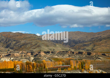 Historic gold sluicings, autumn colours, Felton Road, Bannockburn, near Cromwell, and Carrick Range, Central Otago, - Stock Photo