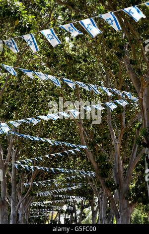 Israeli flags strung up in the trees for Independence Day - Stock Photo