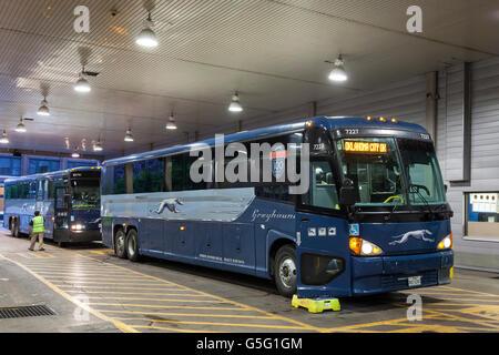 Greyhound Bus Station Dallas Texas Usa Stock Photo