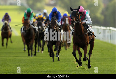 Horse Racing - Leicester Races - Stock Photo