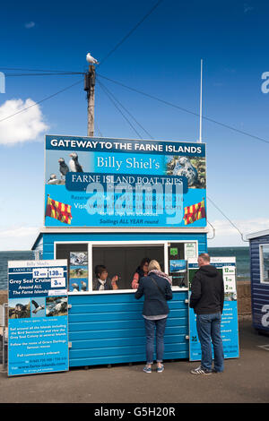UK, England Northumberland, Seahouses Harbour, customers at Billy Shiel's Farne Islands, boat trip booth - Stock Photo