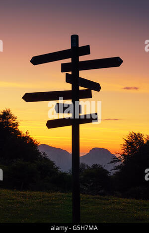 signpost in the mountain. Multiple choice - Stock Photo