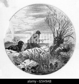 hunting, ducks, duck hunting, wood engraving, 19th century, 19th century, graphic, graphics, half length, hunter, - Stock Photo