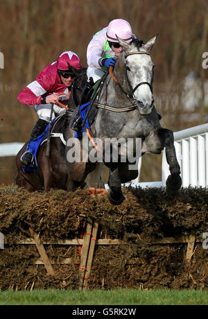 Horse Racing - Hennessey Gold Cup Day - Leopardstown Racecourse - Stock Photo