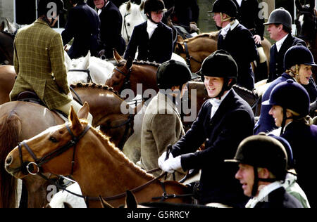 Buccleuch Hunt - Horses and Riders - Stock Photo