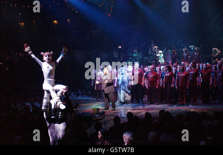 Finale of Cats / Jessica Hill - Stock Photo