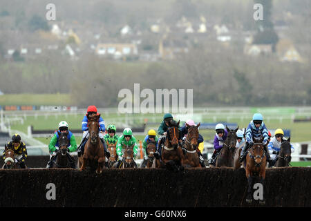 Horse Racing - 2013 Cheltenham Festival - Day One - Cheltenham Racecourse - Stock Photo