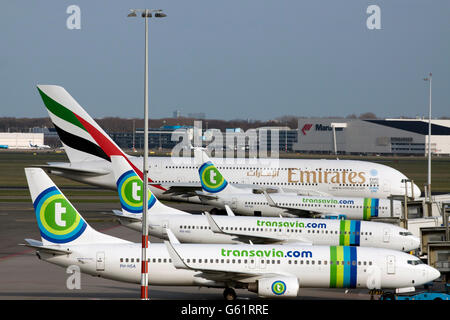 Amsterdam, Holland - february 23,2014 : Parking Transavia boeings and on the background an big airbus 380 from emirates - Stock Photo