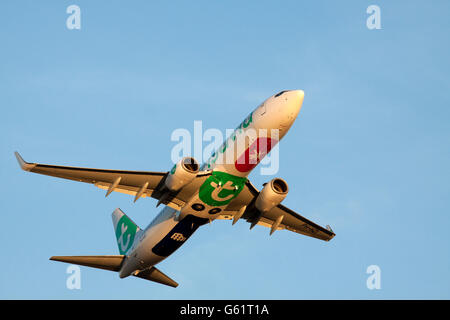 Amsterdam, the netherlands - February 18, 2015 : Boeing 737-800 with the new colors Transavia just taken off from - Stock Photo