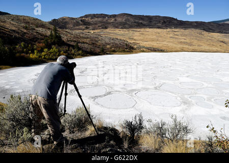 Senior adult man photographing a scenic in Spotted Lake near Osoyoos, British Colulmbia, Canada in the Okanagan - Stock Photo