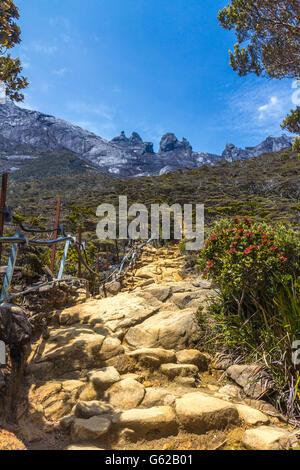 Hiking in Mount Kinabalu Sabah, Malaysia - Stock Photo