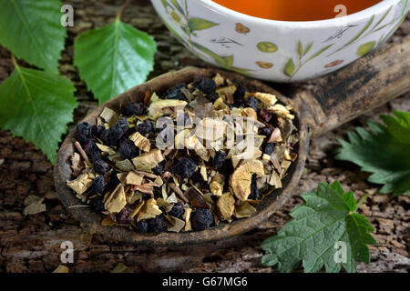 Liquorice root tea blend, birch leaves, stinging nettle, anise, blueberries / (Glycyrrhiza glabra, Betula pendula, - Stock Photo